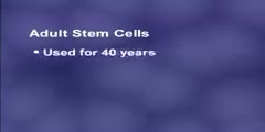 Stem Cells in Body
