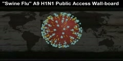 Swine Flu A9 H1N1 Public Access