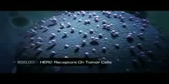 video for Her2 Neu Receptor