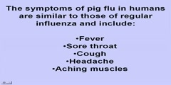 Pig Flu Symptoms - Get Viral Protection from Swine Flu