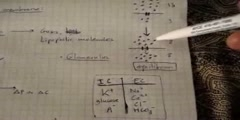 Cell transport physiology (part 1 out 5)