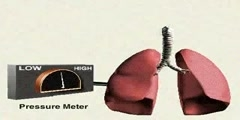 Breathing Mechanism part-2