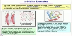 Structural features of alpha helix