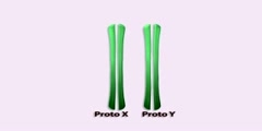 Evolution of the Y Chromosome Part 1
