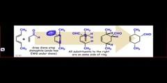 Diels alder stereochemistry explained