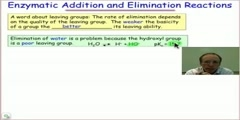 Enzymatic elimination processes