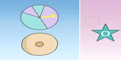 Tumor suppressor and oncogenes video