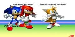 Sonic Hedgehog Signaling Pathway