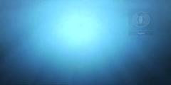 Ocean Observations Biodiversity Video