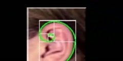 Golden ratio the Fibonacci numbers