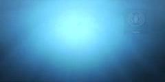 Ocean Biodiversity Video