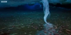 'Brinicle' ice finger of death filmed in Antarctic