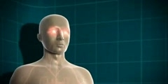 Diabetes and your Body Animation 3D