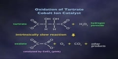 Catalysis: Chemical and Biochemical pt 7