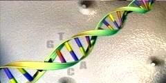 The Human Genome Project Video - 3D Animation Introduction